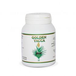Golden Yacca pur - 100 % reines Yucca-Pulver