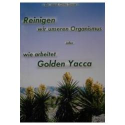 Reinigen wir unseren Organismus - Wie arbeitet Golden Yacca