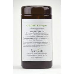 Spira Verde Chlorella vulgaris Pulver aus Taiwan,  Premium Qualität