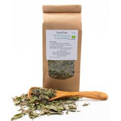 Spira Verde BIO Pfefferminz-Tee aus ganzen Blättern